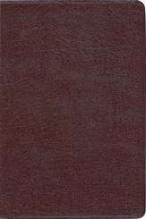 NIV Study Bible, Bonded Leather, Burgundy - Slightly Imperfect