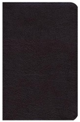NIV Study Bible, Personal-Size, Bonded Leather-Burgundy -  Slightly Imperfect