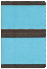 NIV Life Application Study Bible, soft leather-look--chocolate/turquoise 1984