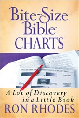 Bite-Size Bible Charts: A Lot of Discovery in a Little Book - Slightly Imperfect