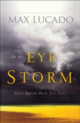 In the Eye of the Storm, repackaged
