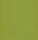NIV (1984) Chunky Bible--soft leather-look, green