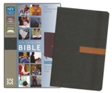 NIV Thinline Compact Bible--soft leather-look, graphite/sienna