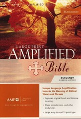 The Amplified Bible, Expanded Edition, Large Print, Bonded leather, burgundy