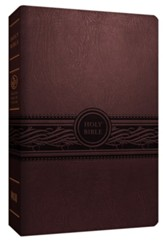 MEV Personal-Size Large-Print Reference Bible--imitation leather, cherry brown