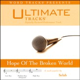 Ultimate Tracks - Hope Of The Broken World - As Made Popular By Selah [Performance Track] [Music Download]
