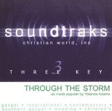 Through The Storm [Music Download]