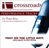 Pray On The Little Days [Made Popular By Mark Bishop] (Performance Track) [Music Download]
