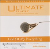 Ultimate Tracks - God Of My Everything - as made popular by Bebo Norman [Performance Track] [Music Download]