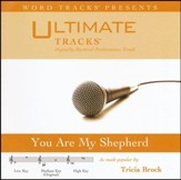 You Are My Shepherd (Medium Key Performance Track w/ Background Vocals) [Music Download]
