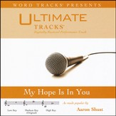 My Hope Is In You (Medium Key Performance Track w/ Background Vocals) [Music Download]