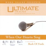 Ultimate Tracks - When Our Hearts Sing - as made popular by Rush Of Fools [Performance Track] [Music Download]