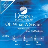 Oh What A Savior, Accompaniment CD