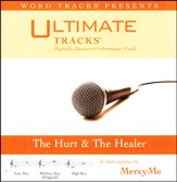 The Hurt & the Healer Acc, CD