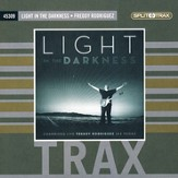 Light In the Darkness (CD Trax)