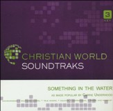 Something In The Water [Music Download]