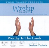 Worship Tracks - Worthy Is The Lamb - as made popular by Darlene Zschech [Performance Track] [Music Download]