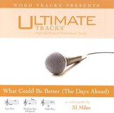Ultimate Tracks - What Could Be Better [The Days Ahead] - as made popular by 33 Miles [Performance Track] [Music Download]