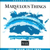 Marvelous Things, Split-Track
