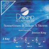 Sometimes It Takes a Storm Acc, CD