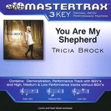 You Are My Shepherd, Acc CD