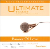 Banner Of Love (as made popular by Luminate) [Performance Track] [Music Download]