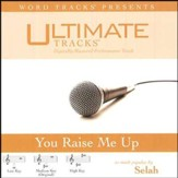 You Raise Me Up - Low key performance track w/ background vocals [Music Download]