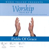 Worship Tracks - Fields Of Grace - as made popular by Big Daddy Weave [Performance Track] [Music Download]