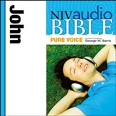 NIV Audio Bible, Pure Voice: John, Narrated by George W. Sarris - Special edition Audiobook [Download]