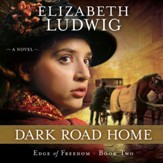 Dark Road Home - Unabridged Audiobook [Download]
