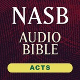 NASB Audio Bible: Acts - Chapter 4 [Download]