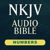 NKJV Audio Bible: Numbers (Voice Only) [Download]
