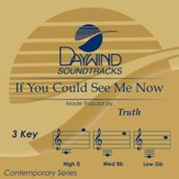 If You Could See Me Now [Music Download]