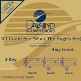 If I Could See What The Angels See [Music Download]