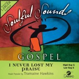 I Never Lost My Praise [Music Download]