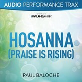 Hosanna (Praise Is Rising) (Original Key With Background Vocals) [Music Download]