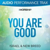 You Are Good (Original Key with Background Vocals) [Music Download]