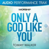 Only a God Like You (Original Key without Background Vocals) [Music Download]