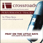 Pray On The Little Days (Performance Track Original with Background Vocals in B-C#) [Music Download]
