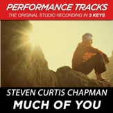 Much Of You (Performance Track In Key Of C Without Background Vocals) [Music Download]