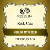 King of My World [Music Download]