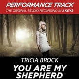 You Are My Shepherd (Low Key Performance Track Without Background Vocals) [Music Download]