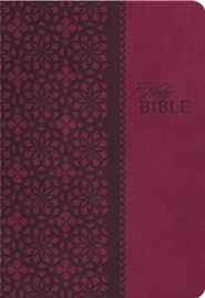 KJV Classic Giant-Print Personal-Size End-of-Verse Reference Bible--imitation leather, rich rose