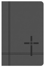 KJV Deluxe Gift & Award Bible [Gray]