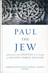 Paul the Jew: Rereading the Apostle As a Figure of Second Temple Judaism