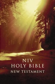 NIV Outreach New Testament--softcover, forest
