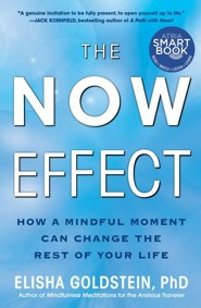 The Now Effect: How This Moment Can Change the Rest of Your Life - eBook  -     By: Elisha Goldstein