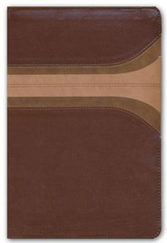 RVR 1960 Biblia de Estudio Arco Iris, canela y damasco, símil piel con Índice, RVR 1960 Rainbow Study Bible, Brown and Tan, LeatherTouch, Thumb-Indexed