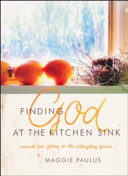 Finding God at the Kitchen Sink: Search for Glory in the Everyday Grime