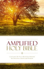 Amplified Thinline Holy Bible, hardcover